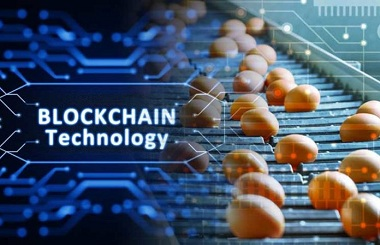 Blockchain Technology is Evolving Food Industry